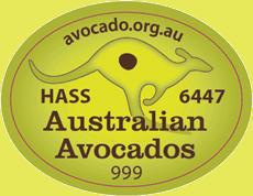Kangaroo label - Australian Avocados