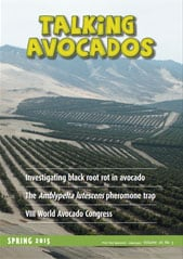 talking avocados spring 2015