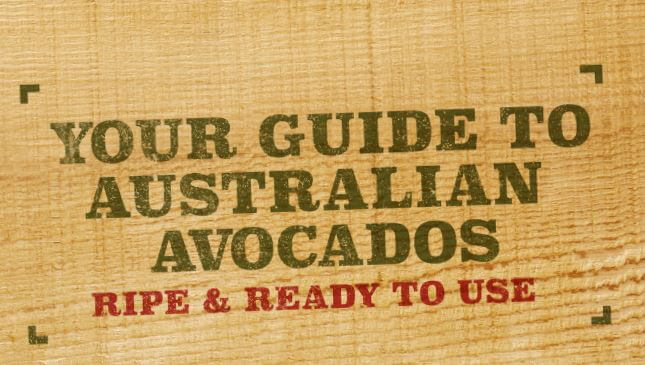 Image Sourced from Talking Avocados